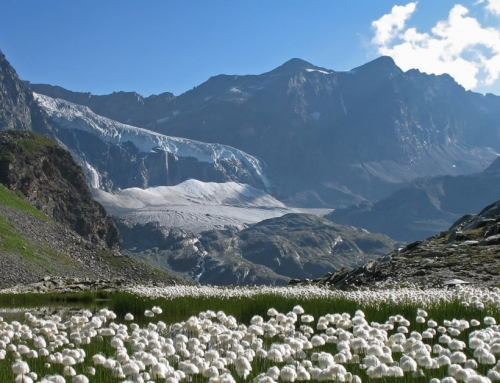Proposte di nuove economie sostenibiliper le comunità di montagna
