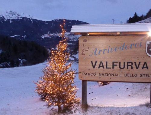 Pro Loco Santa Caterina Valfurva