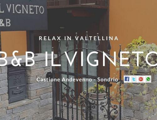 B & B IL VIGNETO Castione Andevenno