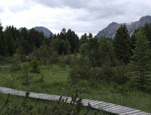 Passeggiata con visita al Paluaccio e al Forte di Oga 29 Maggio